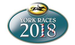 York Racecourse Photos 2018 Season portfolio