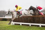 Sandown 9th March 20118 portfolio