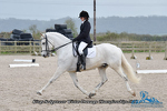 NFU Dressage Champs 080418 Click to enter portfolio