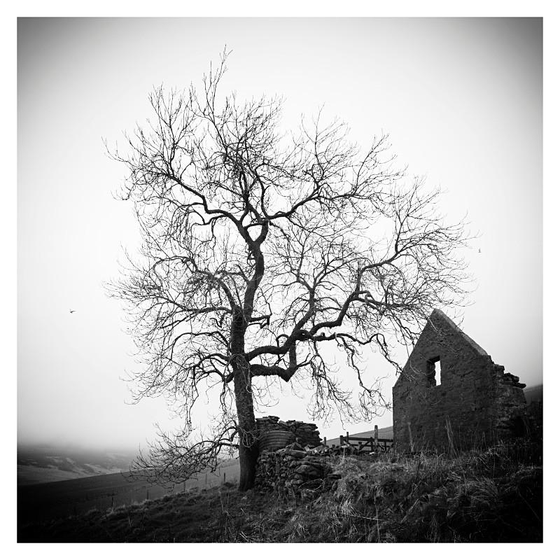 Tollafraick - Landscapes