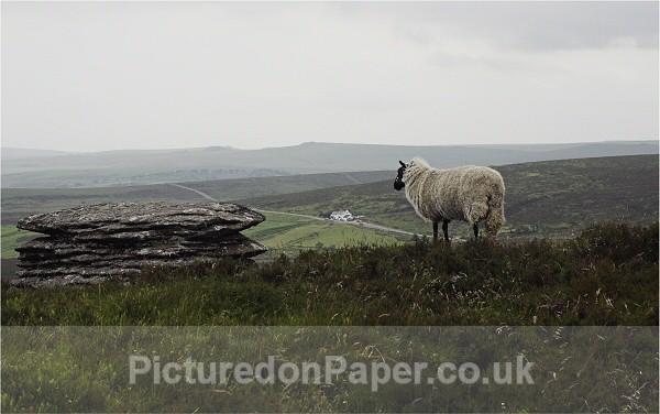 - Devon and Dartmoor