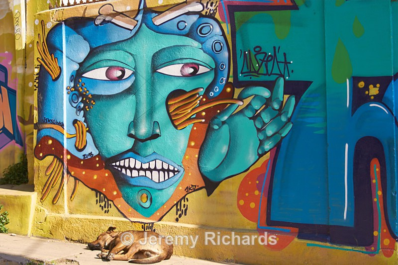 - Urban Art of Valparaiso