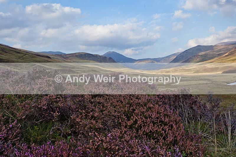 20110928-_MG_6546 - Scotland