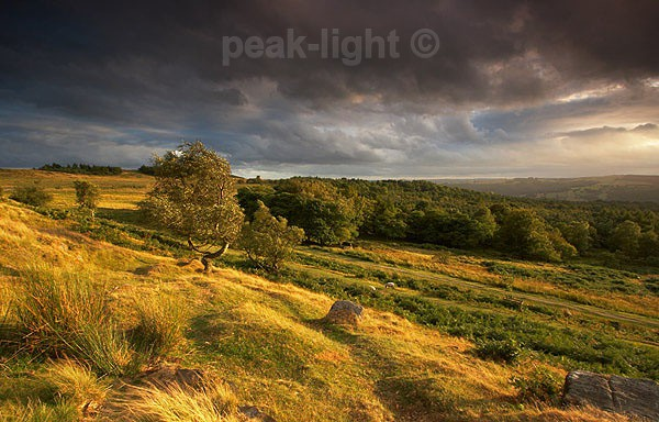 Light over Longshaw - Peak District