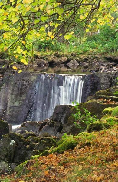 waterfall cascade in autumn fall colours, killarney, co. kerry, ireland.