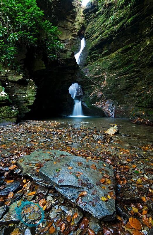 St Nectan's Glen III - Landscapes