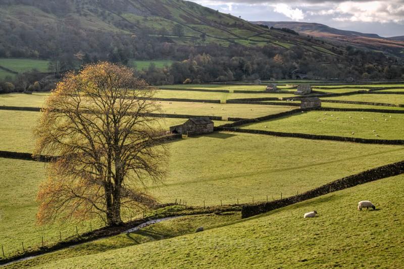 gunnerside - Yorkshire Dales