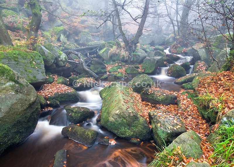 Classic Padley Gorge - Derbyshire111 - Peak District Landscape Photography Gallery