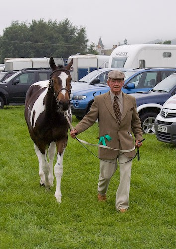 17 - Moniaive Horse Show 2008