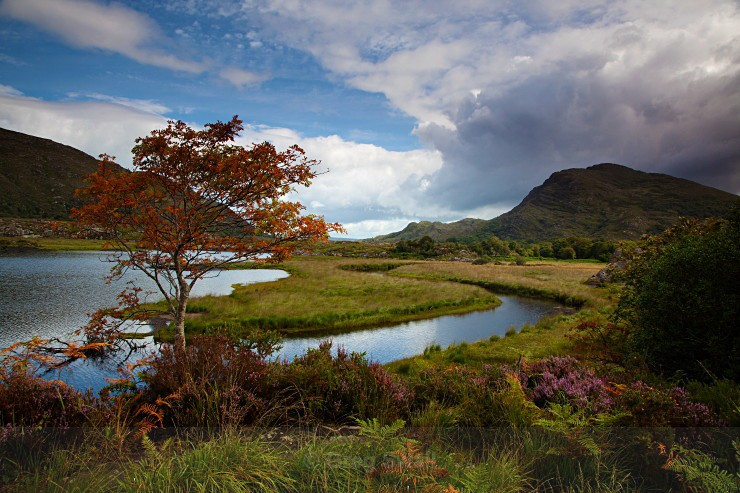 Above the Lakeshore - Landscapes of Ireland - Kerry Lakes and Mountains