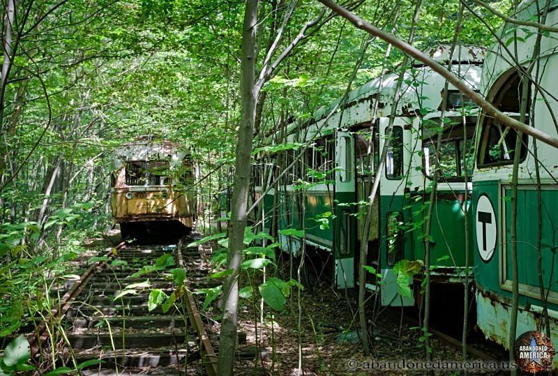 Trolley Graveyard  | Abandoned America