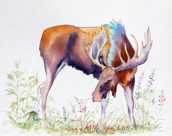 A Banquet of Wildflowers - Watercolor