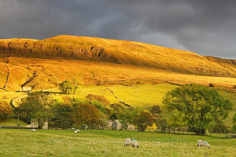 Golden light on Mallerstang      ref 4396 - County Durham