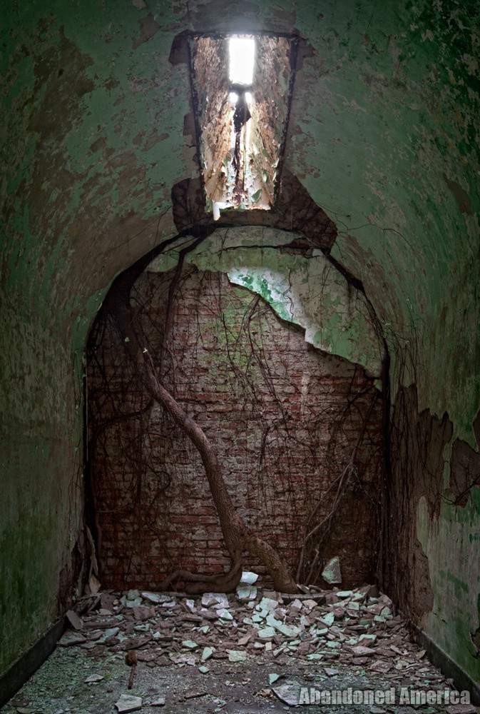 Overgrown cell, Holmesburg Prison, Philadelphia PA   Abandoned America by Matthew Christopher