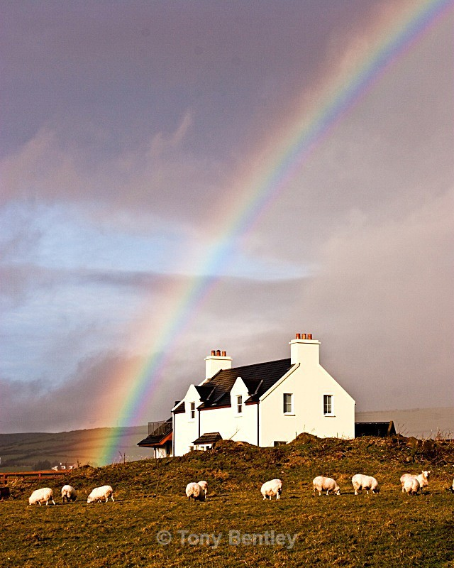 Pot of Gold - Ireland
