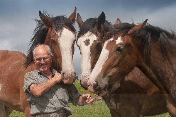 Horseman - Farming/Agriculture