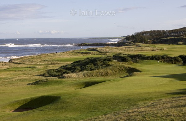 Kingsbarns 6th a driveable par 4 - Kingsbarns Golf Links images