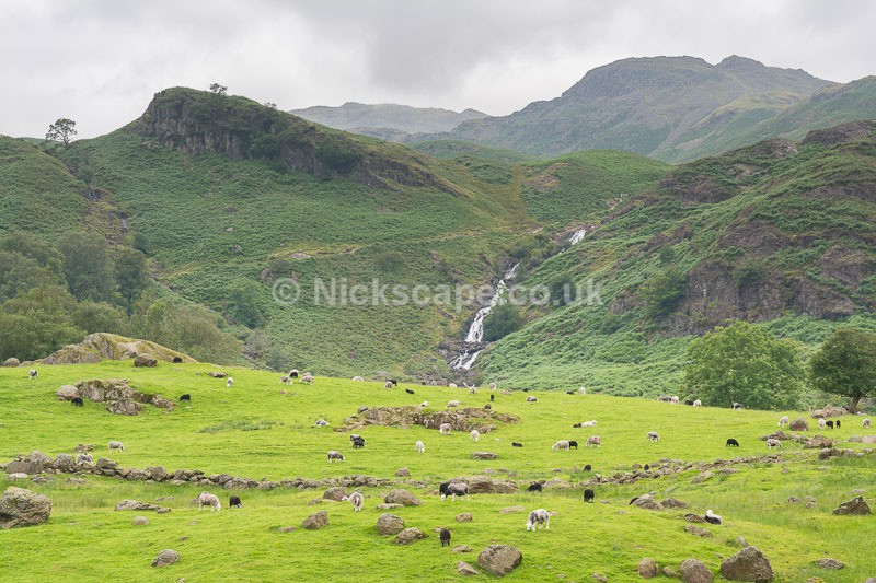 Sour Milk Gill Waterfall - Easedale - Lake District National Park - Lake District National Park