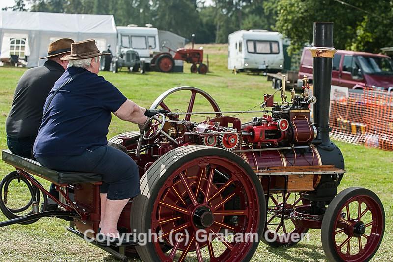 Steam Fair-018 - Bedfordshire Steam and County Fair 2014