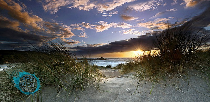 Through the Dunes P - Panorama