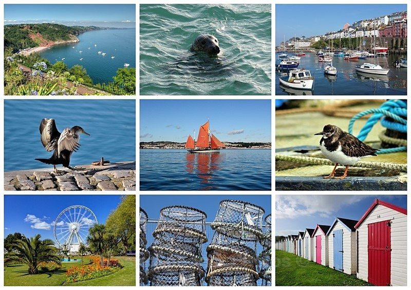 TQ133 New Torbay collage card - Greetings Cards Torquay (separate galleries for Meadfoot Beach/Ansteys and Cockington)