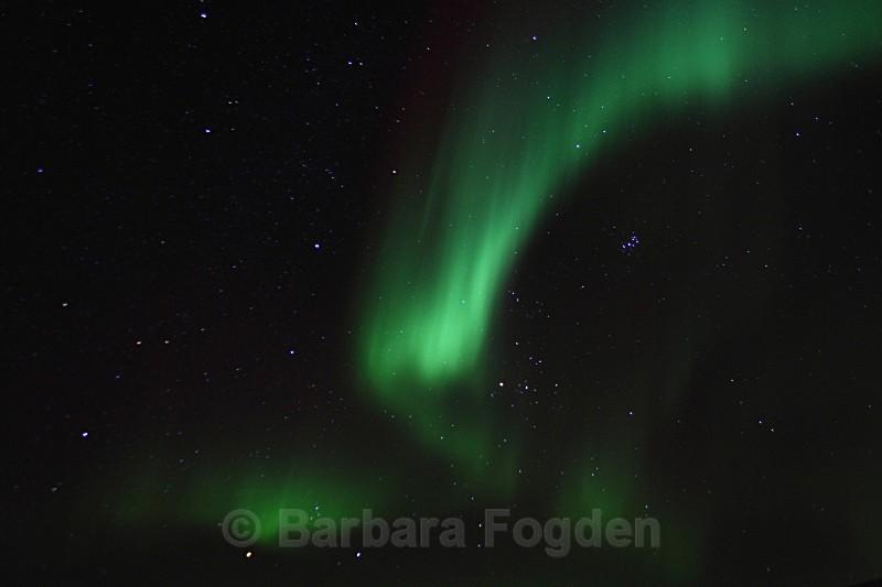 Northern light in Adventdalen 4907 - Polar night