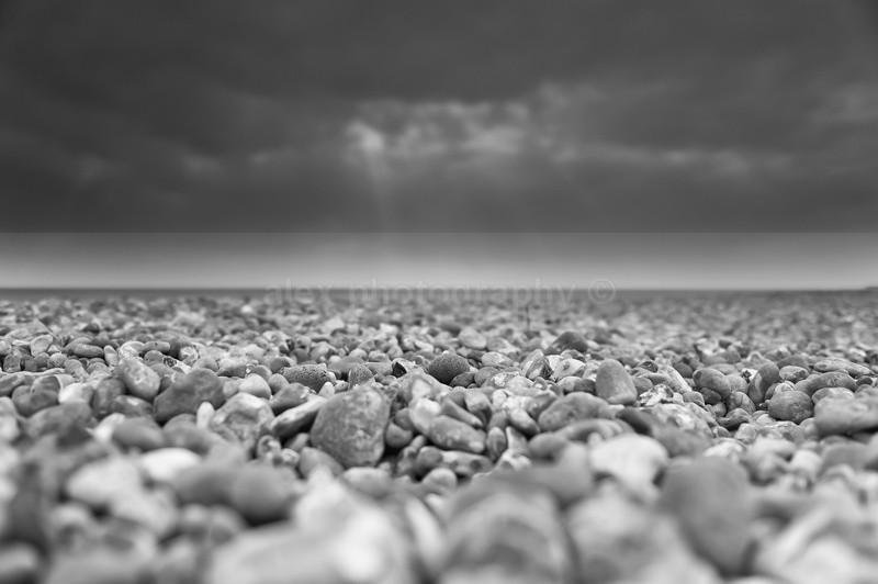 Together, Brighton - Landscape & Seascape