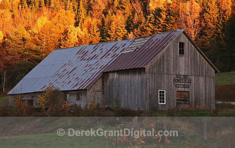 Century Barn Kings County New Brunswick Canada - Old Barns & Buildings