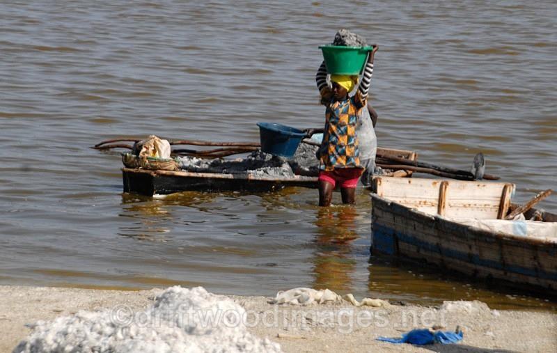 Senegal Lac Rose salt production 7 woman carrying salt from boat to sh - Salt Production in Senegal