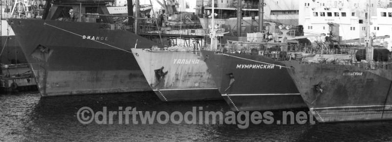Murmansk four ship bows bw - Murmansk, Russia