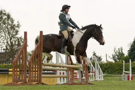 29 - Equestrian Photography