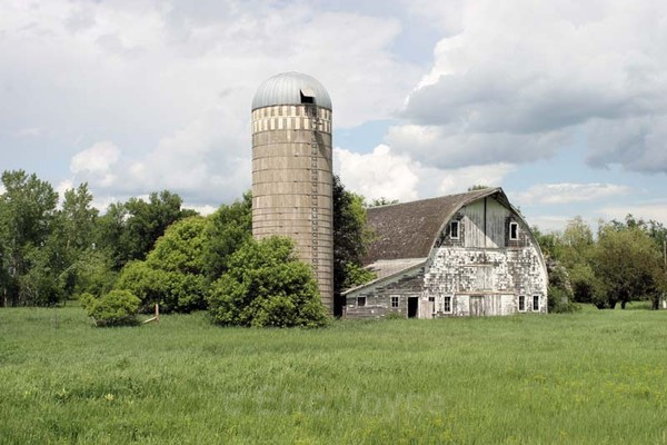 Hillsboro Barn - Barns & Remnants