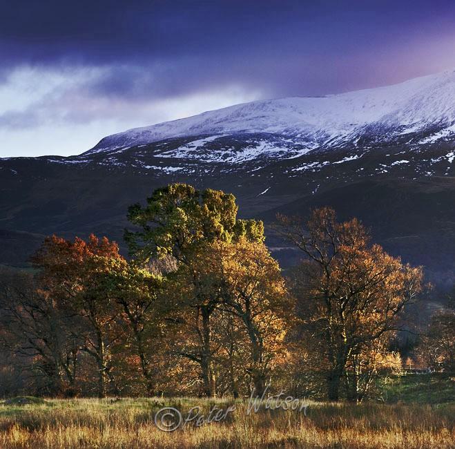 Glen Errochty Perthshire - Scotland