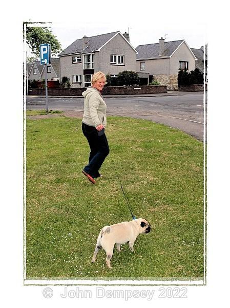 Alfie 4F - Walking the Dog