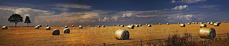Hay Bale-Panorama-1 - A STORMY MONDAY & FRIDAY-NOVEMBER 2012