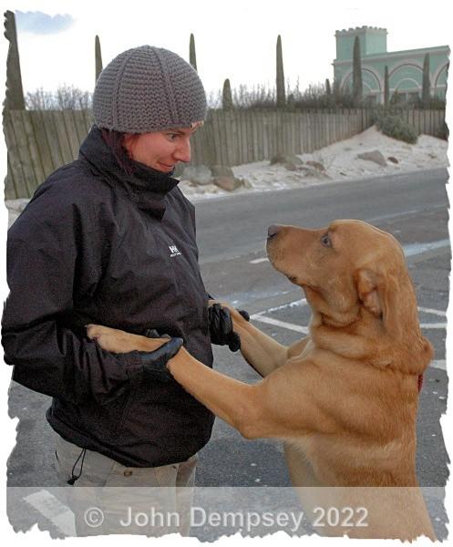 Flint  talks to Amanda. - Walking the Dog
