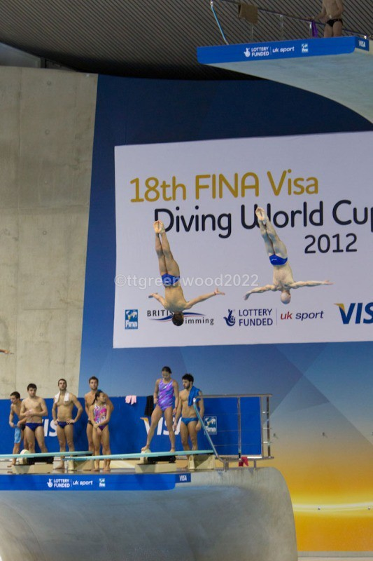 WCD-104 - World Cup Diving