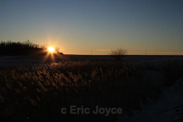 Sloughgrass - SW Minnesota