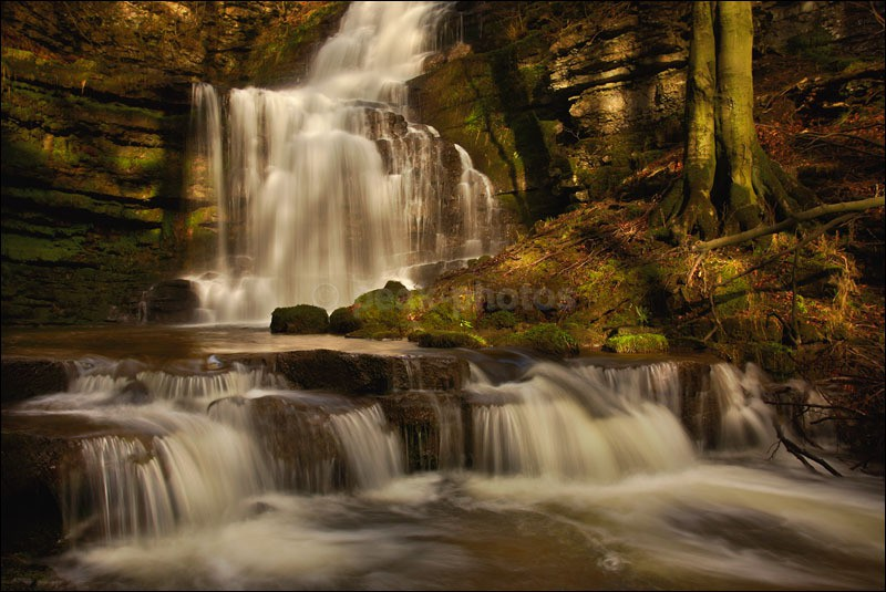 Scaleber Force Falls - Photographs of England