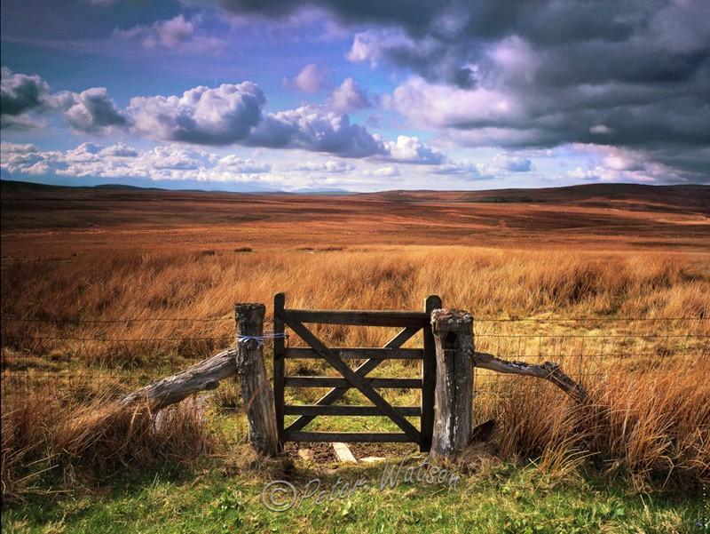Denbigh Moor North Wales - Wales