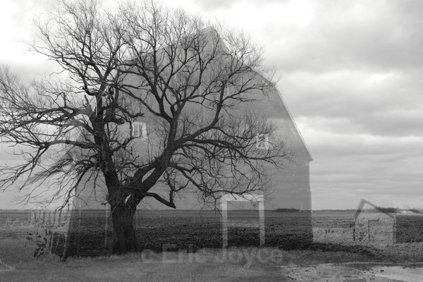 Ghost Barn II - Barns & Remnants
