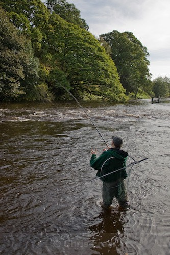 Fishing the Blackwood Beat - Flyfishing Photography