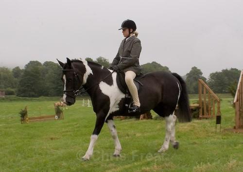 5 - Moniaive Horse Show 2008
