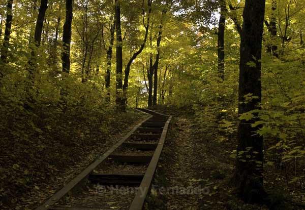 - Fall