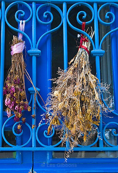 Sidi Bou Said - drying herbs - Tunis, Carthage and Sidu Bou Said