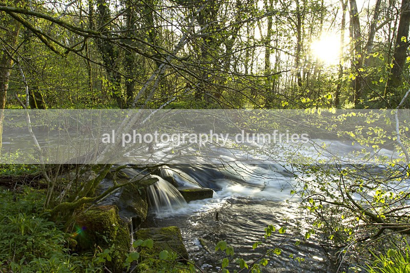 Cluden Burn - Dumfries & Galloway