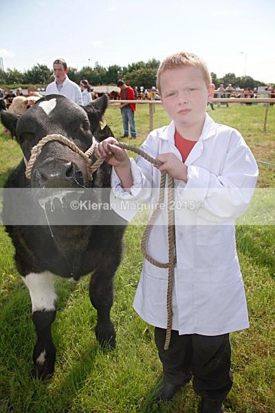 _MGN3293 - Royal Meath Show Trim Co Meath