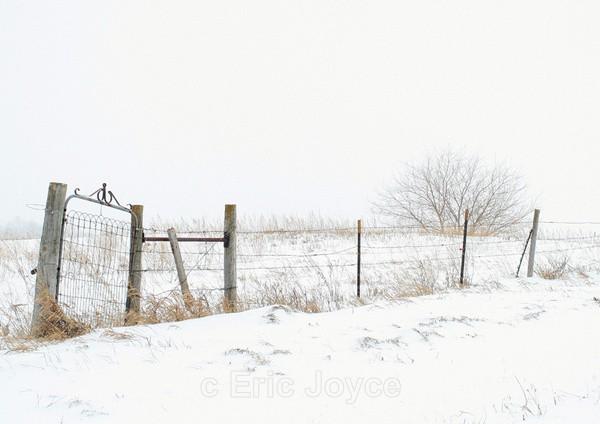 Stormy Thursday - SW Minnesota