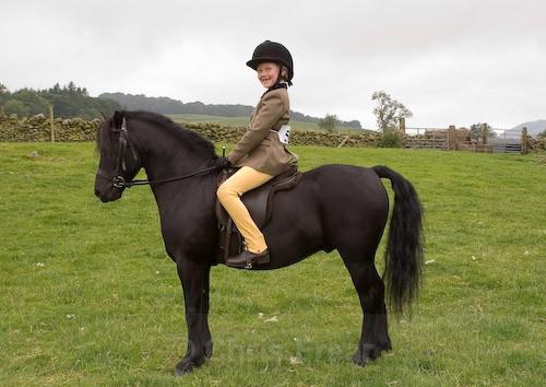 56 - Moniaive Horse Show 2008