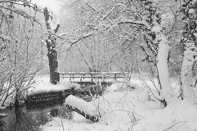 Winter Bridge_IMG_3656_BW - Black & White